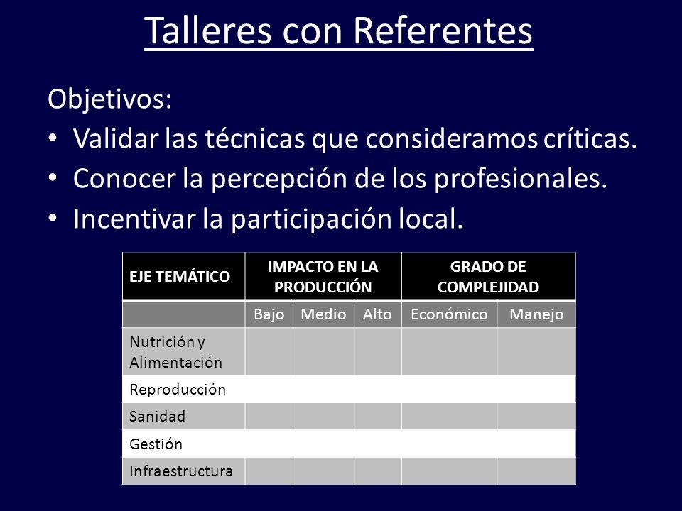 Talleres con Referentes Objetivos: Validar las técnicas que consideramos críticas. Conocer la percepción de los profesionales. Incentivar la participa