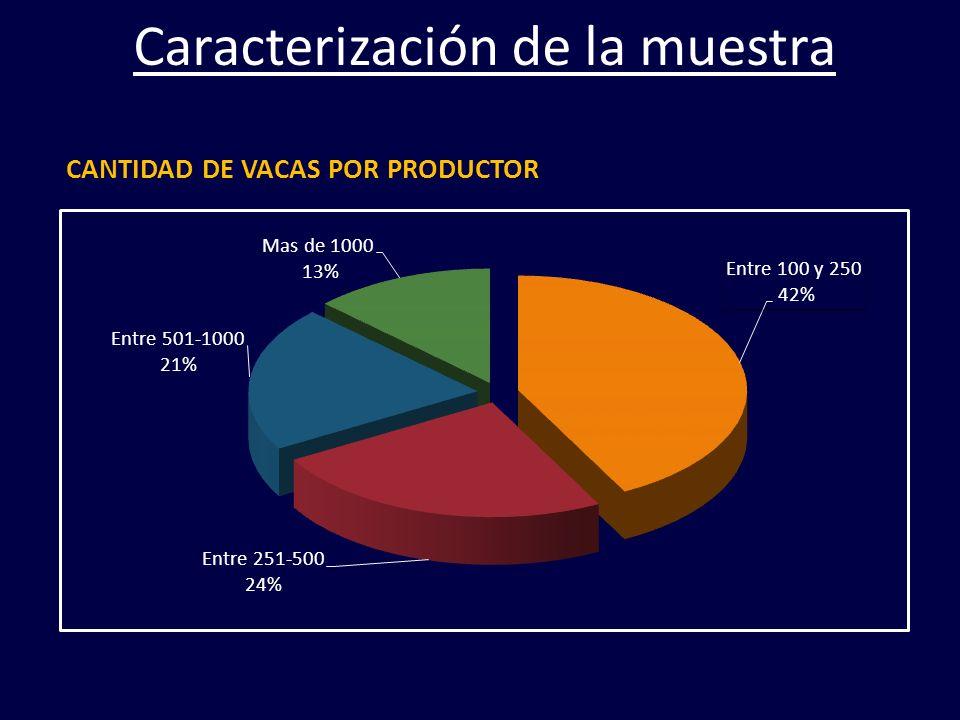 CANTIDAD DE VACAS POR PRODUCTOR Caracterización de la muestra