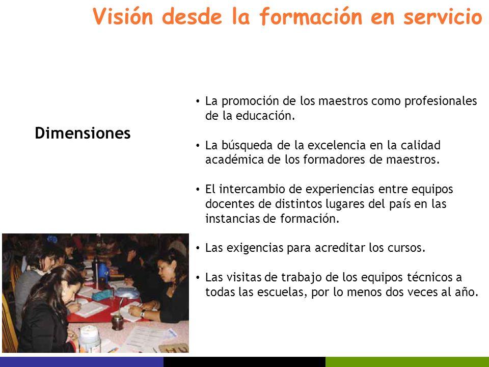 Visión desde la formación en servicio La promoción de los maestros como profesionales de la educación. La búsqueda de la excelencia en la calidad acad