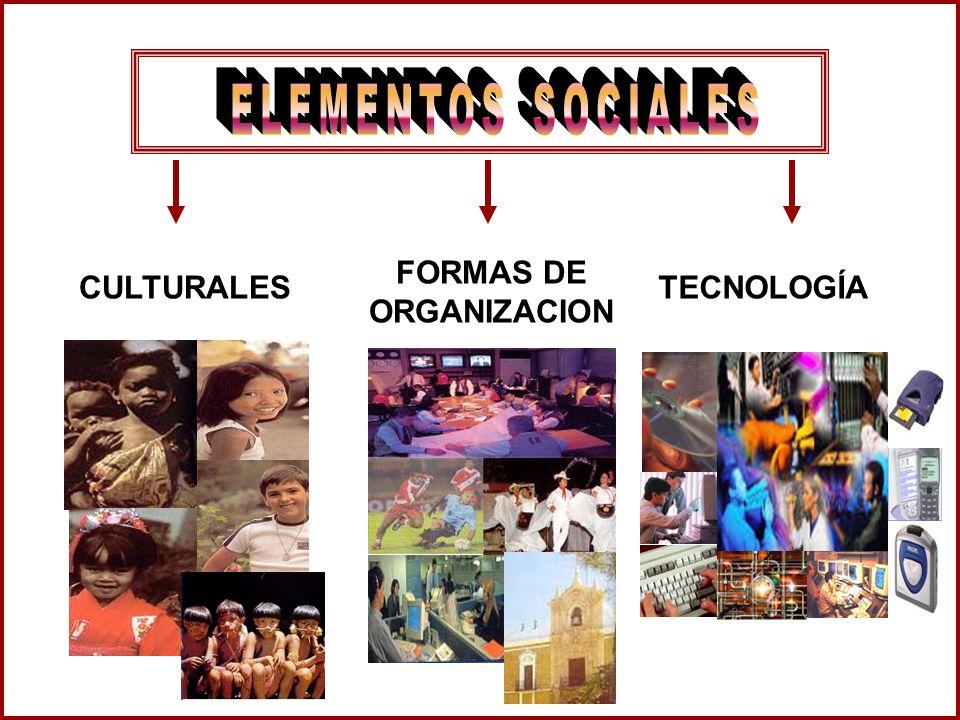 CULTURALES FORMAS DE ORGANIZACION TECNOLOGÍA