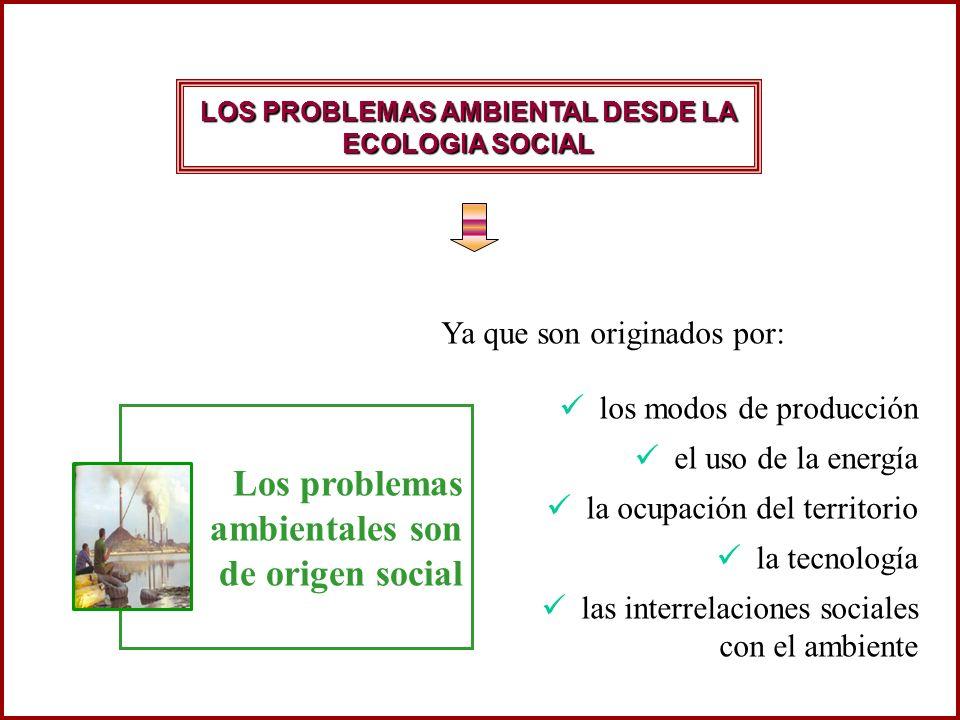 Los problemas ambientales son de origen social los modos de producción el uso de la energía la ocupación del territorio la tecnología las interrelacio