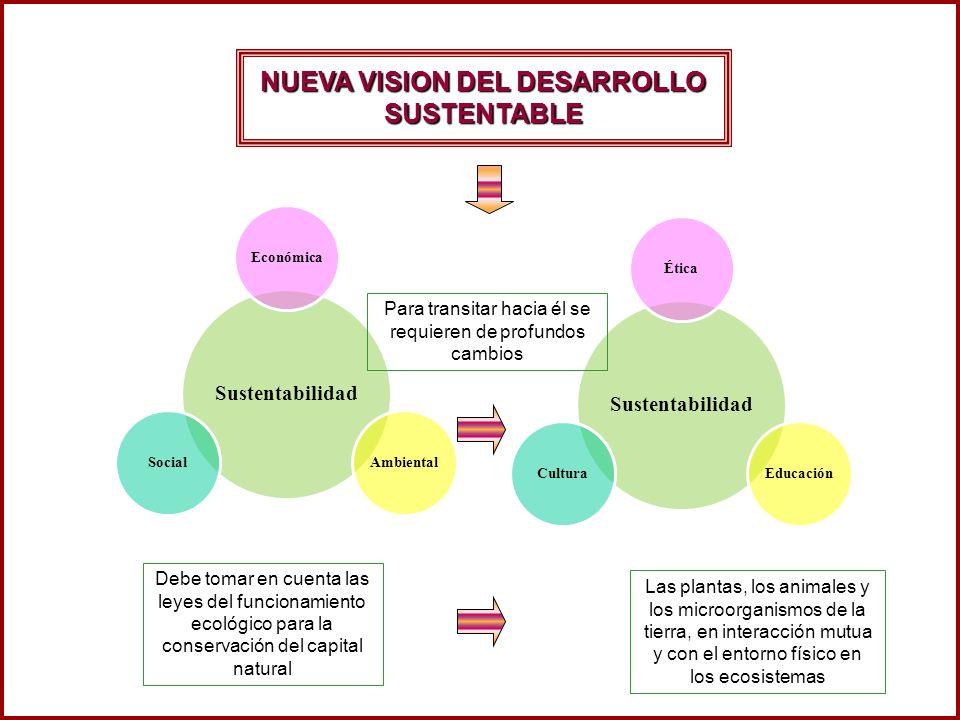 Sustentabilidad ÉticaEducaciónCultura Sustentabilidad EconómicaAmbientalSocial Para transitar hacia él se requieren de profundos cambios Debe tomar en