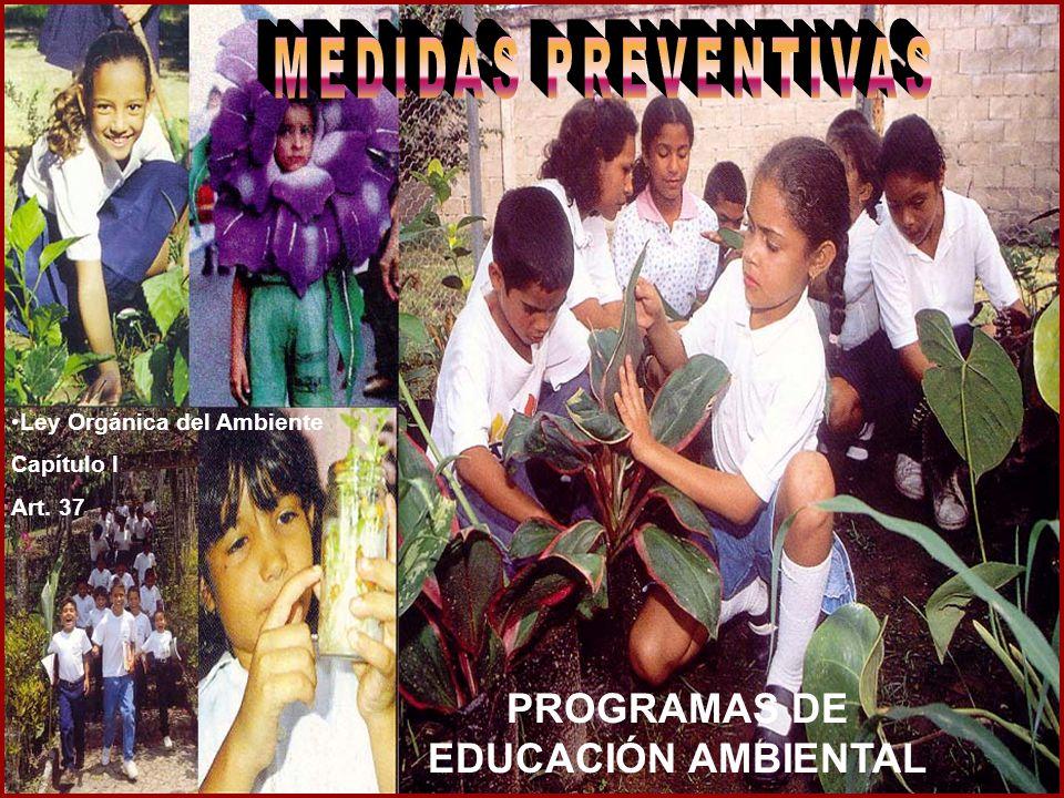 PROGRAMAS DE EDUCACIÓN AMBIENTAL Ley Orgánica del Ambiente Capítulo I Art. 37