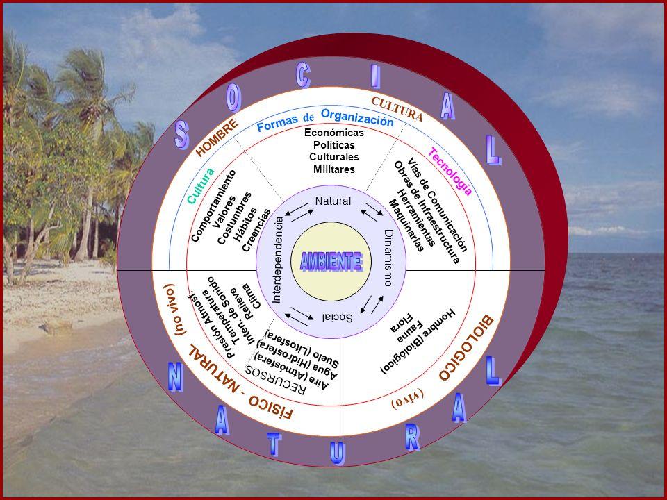Natural Social Interdependencia Dinamismo Cultura HOMBRE CULTURA Comportamiento Valores Costumbres Hábitos Creencias Formas Organización de Económicas
