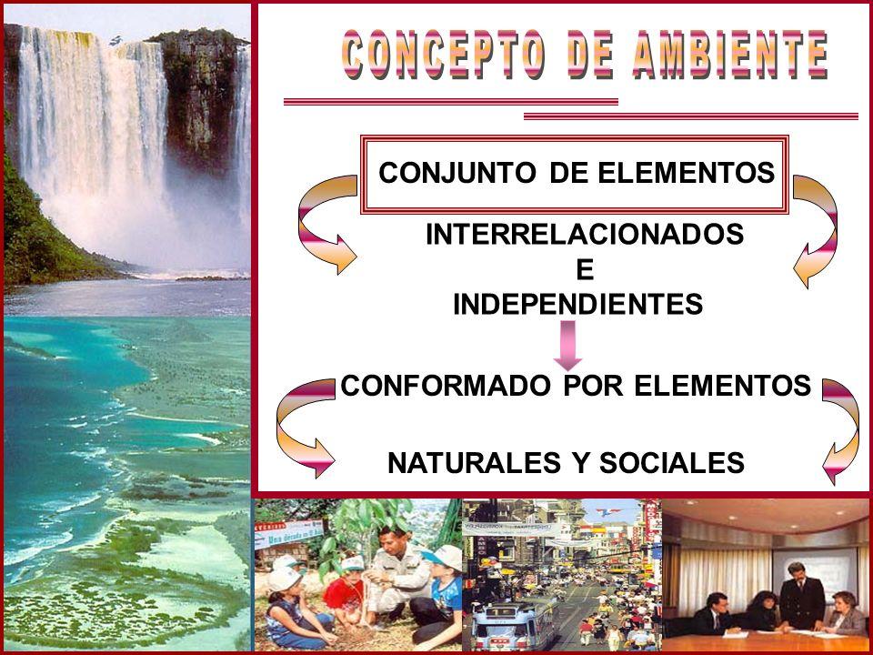 CONJUNTO DE ELEMENTOS INTERRELACIONADOS E INDEPENDIENTES CONFORMADO POR ELEMENTOS NATURALES Y SOCIALES