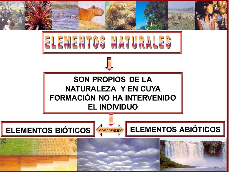 COMPRENDIDO SON PROPIOS DE LA NATURALEZA Y EN CUYA FORMACIÓN NO HA INTERVENIDO EL INDIVIDUO ELEMENTOS BIÓTICOS ELEMENTOS ABIÓTICOS