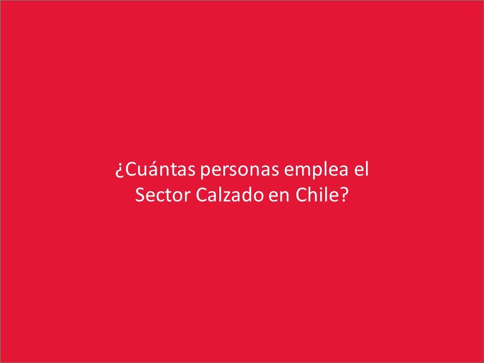 ¿Cuántas personas emplea el Sector Calzado en Chile?