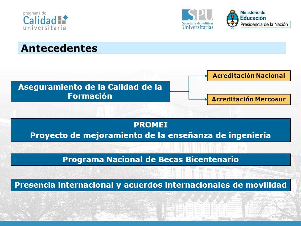 Antecedentes Aseguramiento de la Calidad de la Formación PROMEI Proyecto de mejoramiento de la enseñanza de ingeniería Acreditación Nacional Acreditación Mercosur Programa Nacional de Becas Bicentenario Presencia internacional y acuerdos internacionales de movilidad