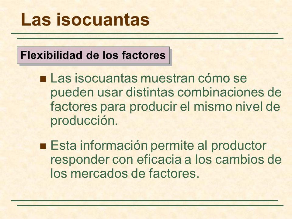 Las isocuantas muestran cómo se pueden usar distintas combinaciones de factores para producir el mismo nivel de producción. Esta información permite a