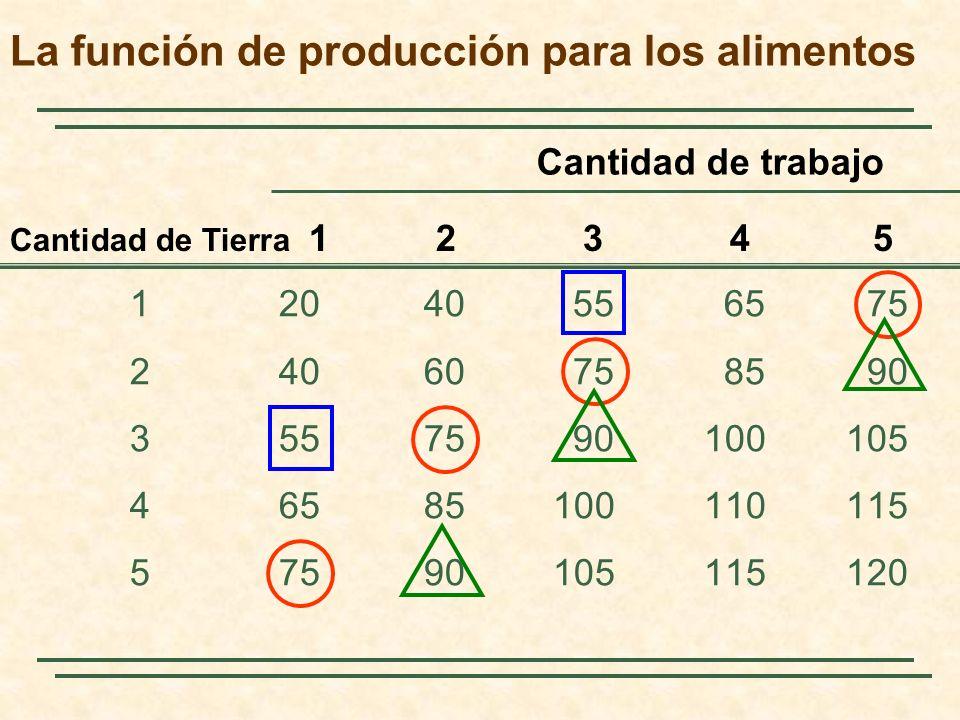 La función de producción para los alimentos 12040556575 24060758590 3557590100105 46585100110115 57590105115120 Cantidad de Tierra 1 2 3 4 5 Cantidad