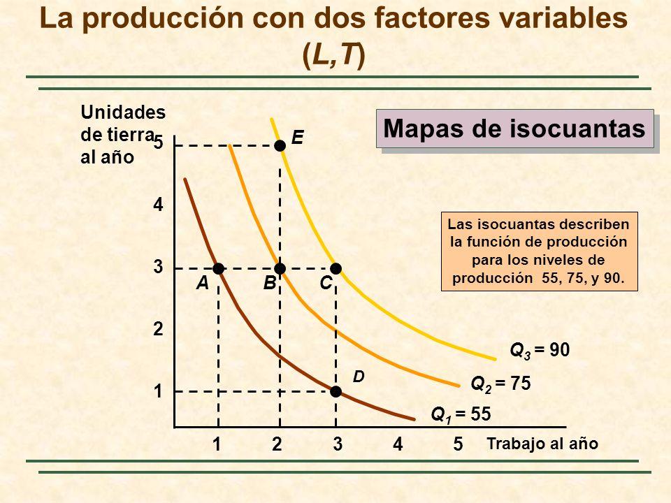 La producción con dos factores variables (L,T) Trabajo al año 1 2 3 4 12345 5 Q 1 = 55 Las isocuantas describen la función de producción para los nive
