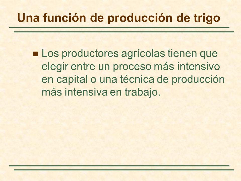 Una función de producción de trigo Los productores agrícolas tienen que elegir entre un proceso más intensivo en capital o una técnica de producción m