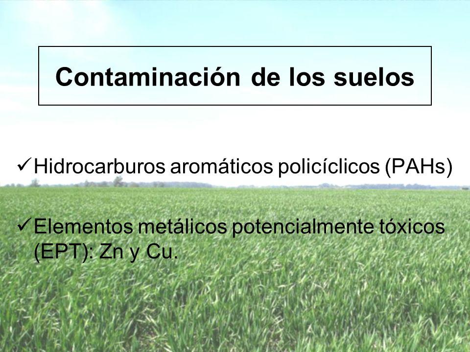 Biorremediación * Degradación enzimática * Remediación microbiana * Fitorremediación Es una tecnología innovadora que permite remediar suelos contaminados utilizando seres vivos.