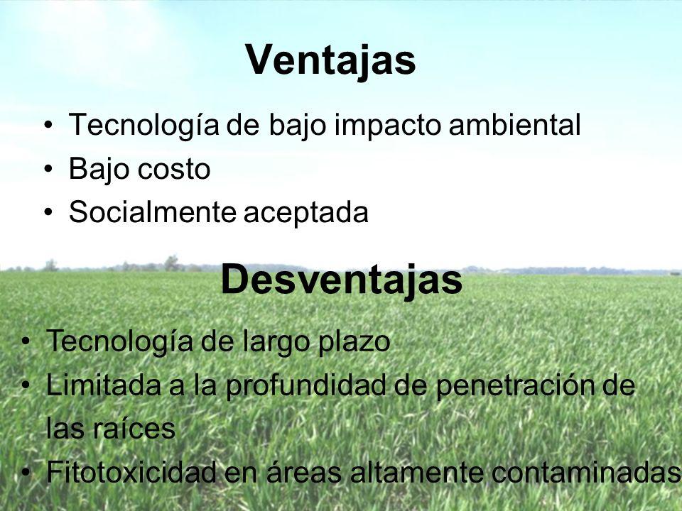 Biosólidos Producto generado durante el proceso de depuración de aguas residuales de origen doméstico, comercial o barros producidos en plantas de tratamiento de efluentes líquidos o sólidos.