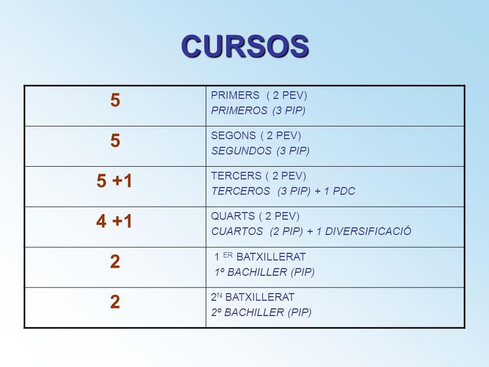 CURSOS 5 PRIMERS ( 2 PEV) PRIMEROS (3 PIP) 5 SEGONS ( 2 PEV) SEGUNDOS (3 PIP) 5 +1 TERCERS ( 2 PEV) TERCEROS (3 PIP) + 1 PDC 4 +1 QUARTS ( 2 PEV) CUAR