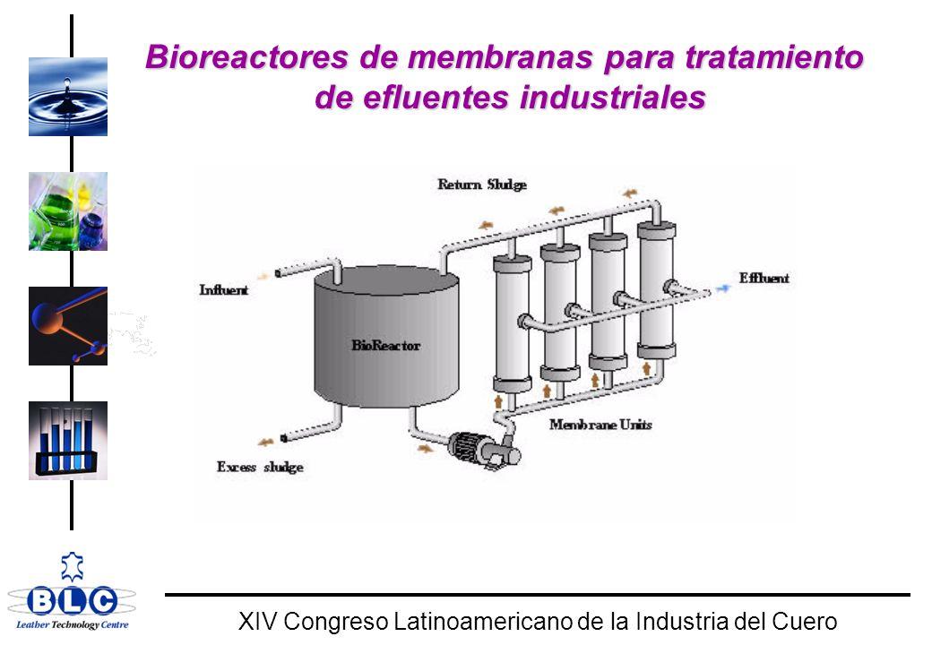 WORLD CLASS XIV Congreso Latinoamericano de la Industria del Cuero Bioreactores de membranas para tratamiento de efluentes industriales