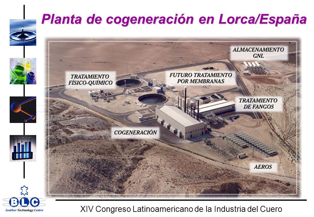 WORLD CLASS XIV Congreso Latinoamericano de la Industria del Cuero Planta de cogeneración en Lorca/España