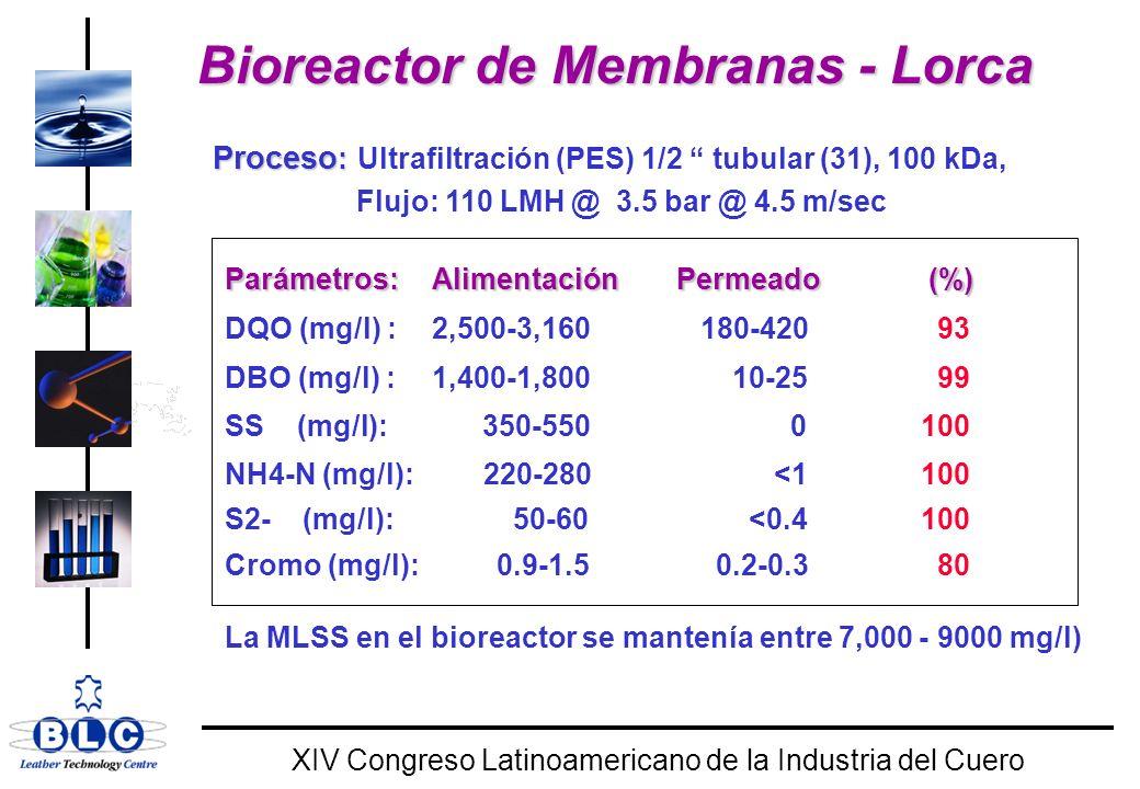 WORLD CLASS XIV Congreso Latinoamericano de la Industria del Cuero Bioreactor de Membranas - Lorca Proceso : Proceso : Ultrafiltración (PES) 1/2 tubular (31), 100 kDa, Flujo: 110 LMH @ 3.5 bar @ 4.5 m/sec Parámetros:AlimentaciónPermeado (%) DQO (mg/l) :2,500-3,160 180-420 93 DBO (mg/l) :1,400-1,800 10-25 99 SS (mg/l): 350-550 0100 NH4-N (mg/l): 220-280 <1 100 S2- (mg/l):50-60 <0.4100 Cromo (mg/l): 0.9-1.5 0.2-0.3 80 La MLSS en el bioreactor se mantenía entre 7,000 - 9000 mg/l)