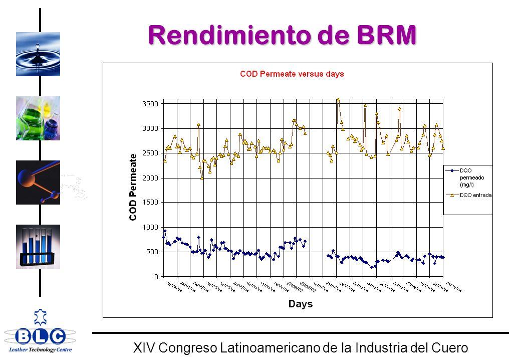 WORLD CLASS XIV Congreso Latinoamericano de la Industria del Cuero Rendimiento de BRM