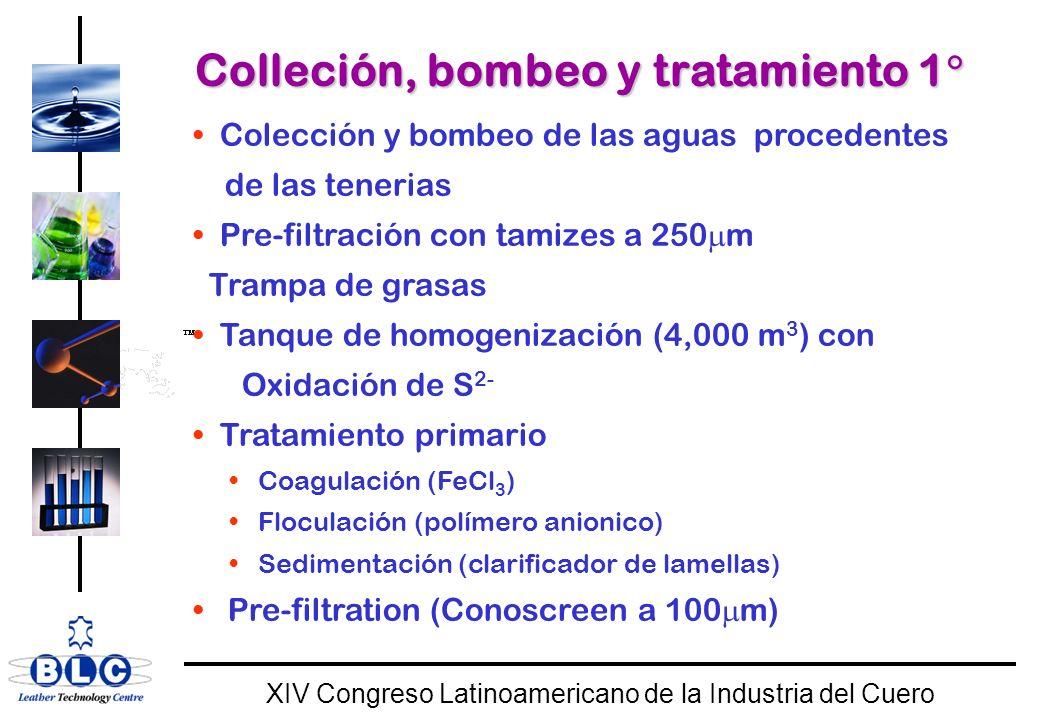 WORLD CLASS XIV Congreso Latinoamericano de la Industria del Cuero Colleción, bombeo y tratamiento 1 Colleción, bombeo y tratamiento 1 Colección y bombeo de las aguas procedentes de las tenerias Pre-filtración con tamizes a 250 m Trampa de grasas Tanque de homogenización (4,000 m 3 ) con Oxidación de S 2- Tratamiento primario Coagulación (FeCl 3 ) Floculación (polímero anionico) Sedimentación (clarificador de lamellas) Pre-filtration (Conoscreen a 100 m)