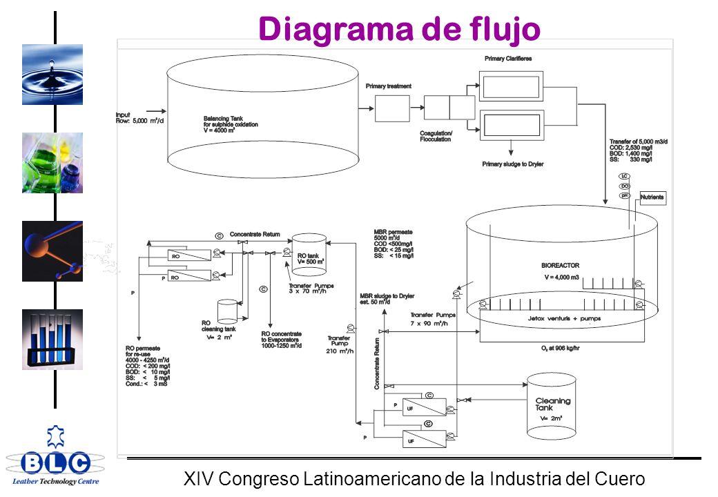 WORLD CLASS XIV Congreso Latinoamericano de la Industria del Cuero Diagrama de flujo
