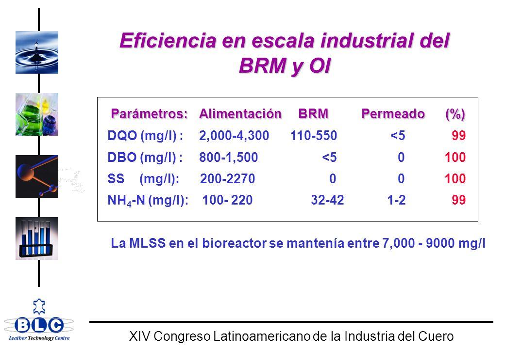 WORLD CLASS XIV Congreso Latinoamericano de la Industria del Cuero Eficiencia en escala industrial del BRM y OI Parámetros:Alimentación BRM Permeado (%) DQO (mg/l) : 2,000-4,300 110-550 <5 99 DBO (mg/l) : 800-1,500 <5 0 100 SS (mg/l): 200-2270 0 0 100 NH 4 -N (mg/l): 100- 220 32-42 1-2 99 La MLSS en el bioreactor se mantenía entre 7,000 - 9000 mg/l