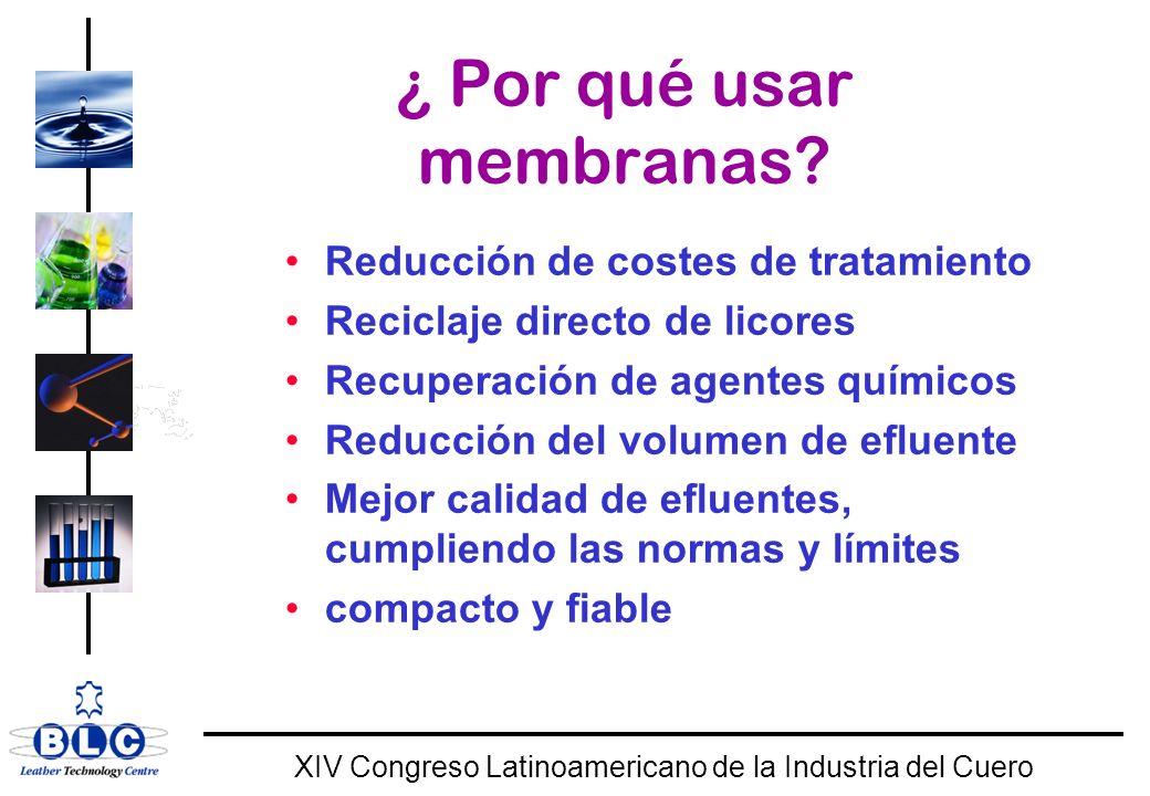 WORLD CLASS XIV Congreso Latinoamericano de la Industria del Cuero ¿ Por qué usar membranas.