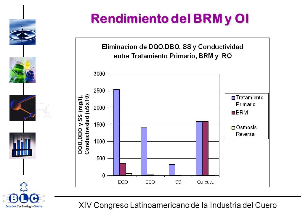 WORLD CLASS XIV Congreso Latinoamericano de la Industria del Cuero Rendimiento del BRM y OI