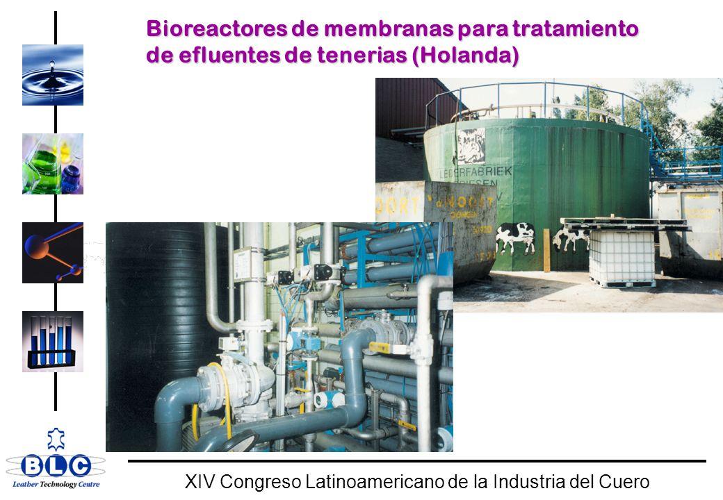 WORLD CLASS XIV Congreso Latinoamericano de la Industria del Cuero Bioreactores de membranas para tratamiento de efluentes de tenerias (Holanda)