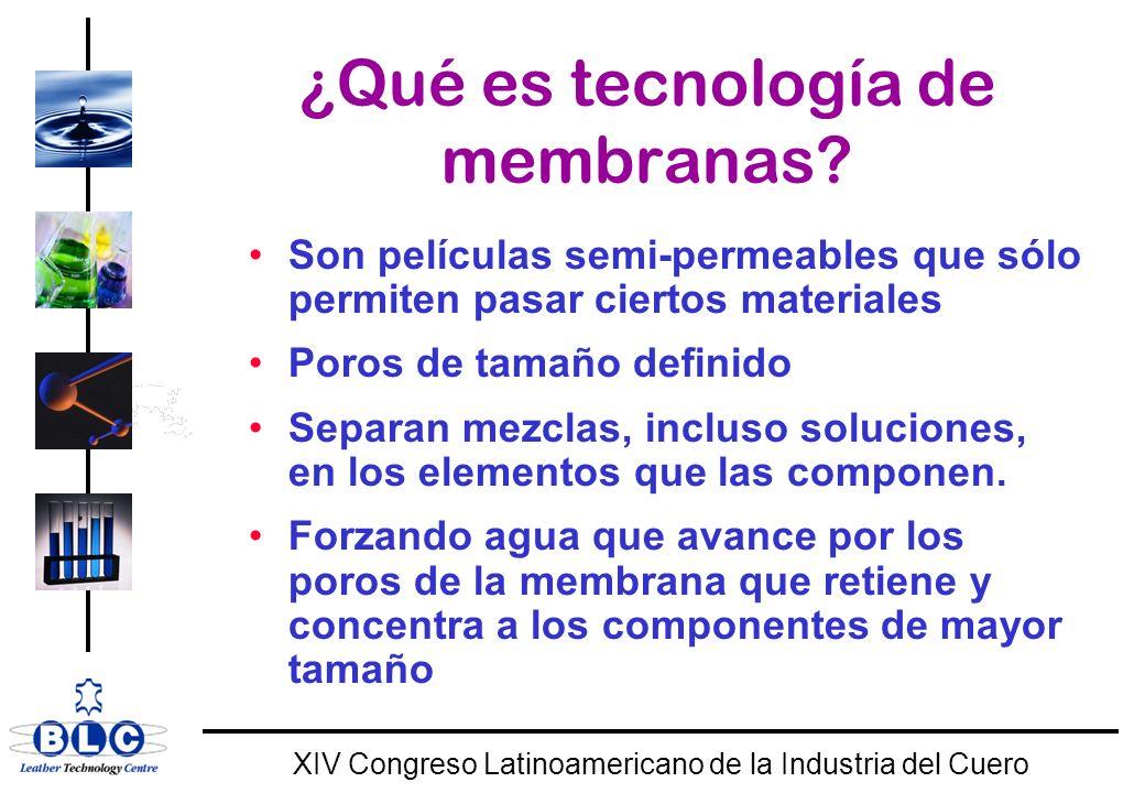 WORLD CLASS XIV Congreso Latinoamericano de la Industria del Cuero 1) Bayern-Leder GmbHCaudal :700 m 3 / día AntesDespués DQO : 7200 mg/l200-400 mg/l DBO : 3800 mg/l<20 mg/l NH 4 : 700 mg/l<50 mg/l 2) Lederfabriek Driesen Caudal :120 m 3 / día AntesDespués DQO : 12k -18 000 mg/l<600 mg/l DBO : 2000 - 4000 mg/l<10 mg/l NH 4 : 500 - 600 mg/l <50 mg/l SST:2500 - 6000 mg/l <10 mg/l BRM establecidos en tenerías