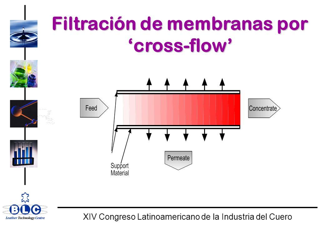 WORLD CLASS XIV Congreso Latinoamericano de la Industria del Cuero Bioreactor de membranas para tratamiento de efluente de tenerias (España)