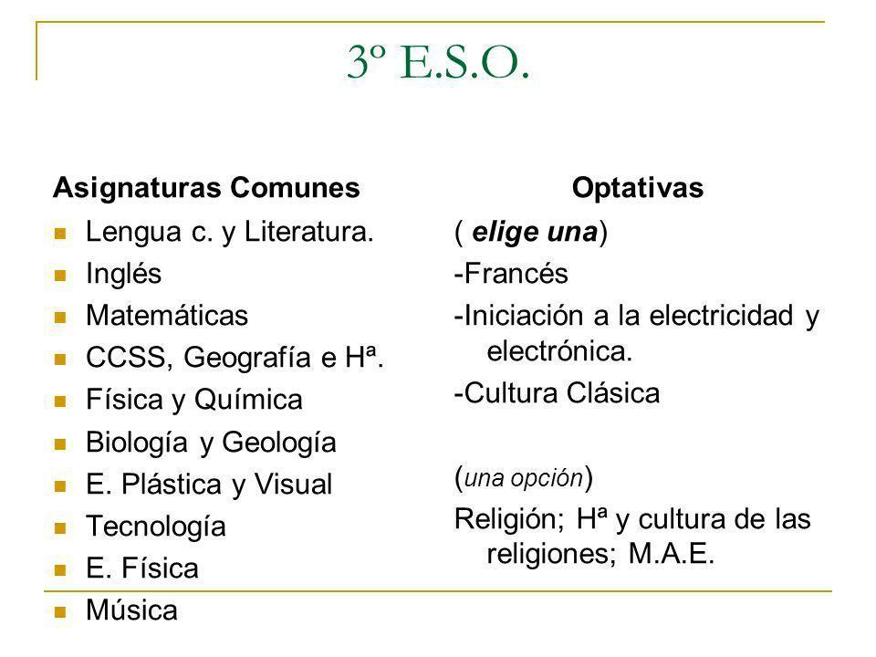 1º BACHILLERATO (I.E.S.ALISTE) CIENCIAS Y TECNOLOGÍA MATERIAS COMUNES - EDUCACIÓN FÍSICA -INGLÉS - LENGUA CASTELLANA Y LITERATURA - CIENCIAS PARA EL MUNDO CONTEMPORANEO - FILOSOFÍA Y CIUDADANÍA RELIGIÓN // MEDIDAS DE ATENCIÓN EDUCATIVA MATERIAS DE MODALIDAD: ITINERARIO 1 MATEMATICAS I FÍSICA Y QUÍMICA BIOLOGÍA Y GEOLOGÍA ITINERARIO 2 MATEMÁTICAS I FÍSICA Y QUÍMICA DIBUJO TÉCNICO I ITINERARIO 3 MATEMÁTICAS I FÍSICA Y QUÍMICA TECNOLOGÍA INDUSTRIAL OPTATIVAS: francés, tecnología de la información, psicología.