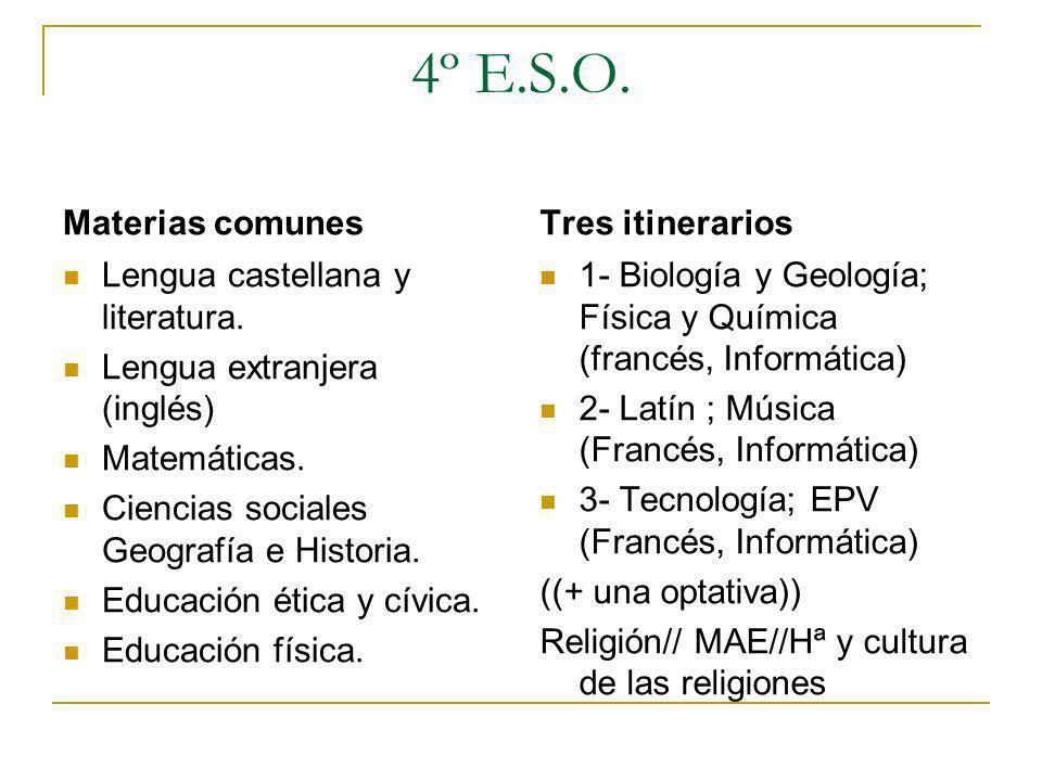 4º E.S.O. Materias comunes Lengua castellana y literatura. Lengua extranjera (inglés) Matemáticas. Ciencias sociales Geografía e Historia. Educación é