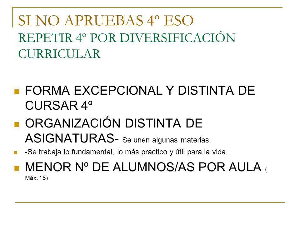 4ºdiversificación MATERIAS COMUNES 1- EDUCACIÓN PLÁSTICA Y VISUAL.