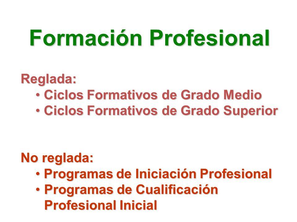 Reglada: Ciclos Formativos de Grado Medio Ciclos Formativos de Grado Medio Ciclos Formativos de Grado Superior Ciclos Formativos de Grado Superior No