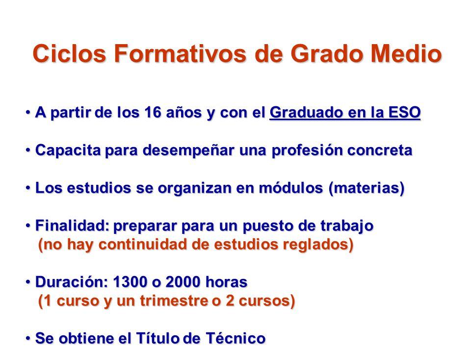 Ciclos Formativos de Grado Medio A partir de los 16 años y con el Graduado en la ESO A partir de los 16 años y con el Graduado en la ESO Capacita para