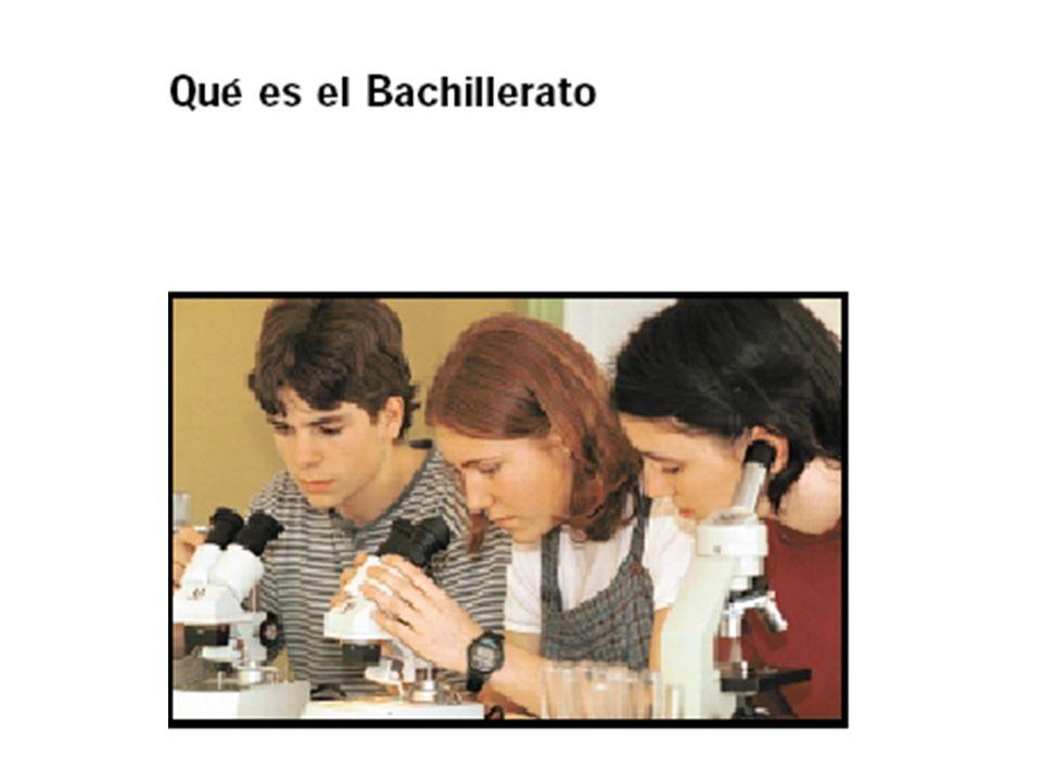 Etapa formativa no obligatoria Dos cursos Objetivos: madurez intelectual y humana.