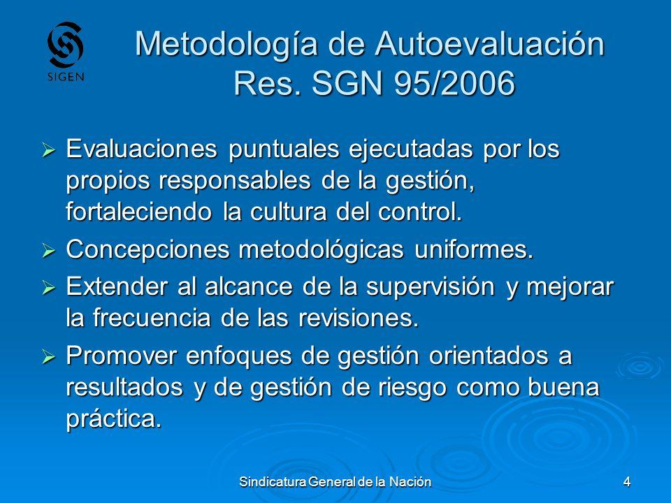 Sindicatura General de la Nación4 Metodología de Autoevaluación Res. SGN 95/2006 Evaluaciones puntuales ejecutadas por los propios responsables de la