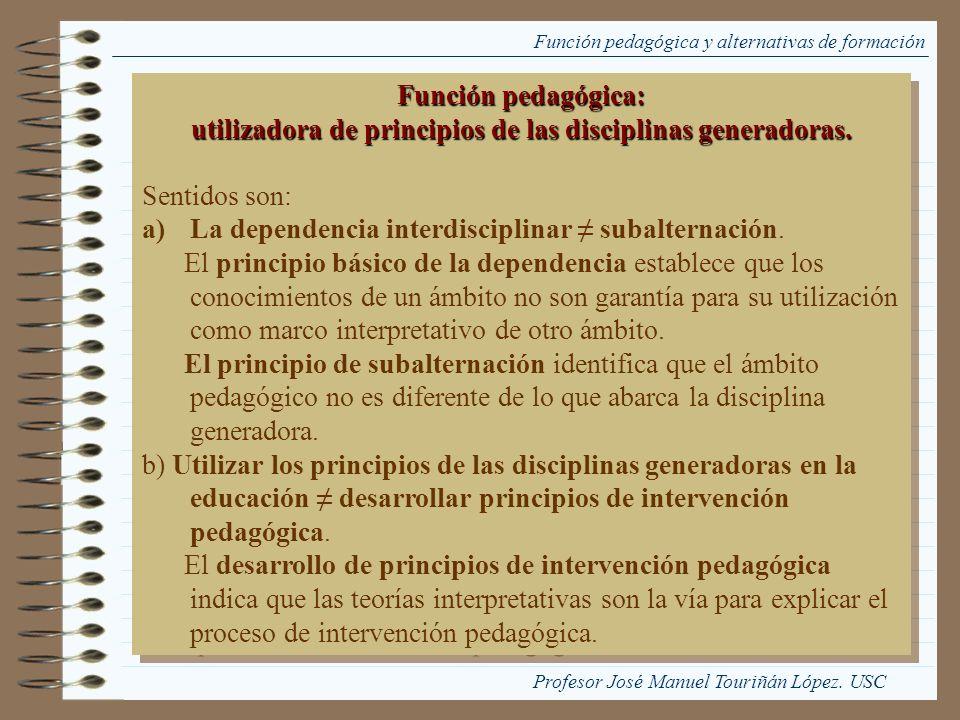 Función pedagógica y alternativas de formación Función pedagógica: utilizadora de principios de las disciplinas generadoras. Sentidos son: a)La depend