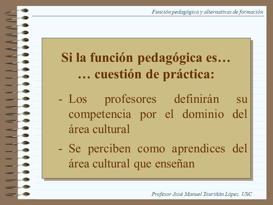 Función pedagógica y alternativas de formación Si la función pedagógica es… … cuestión de práctica: -Los profesores definirán su competencia por el do