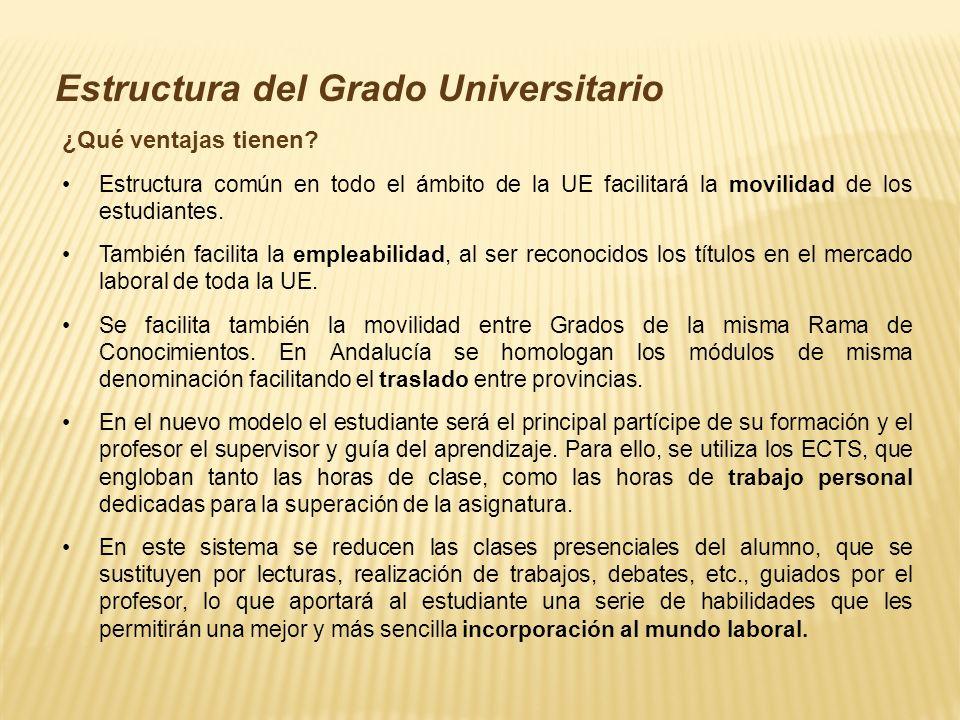 Estructura del Grado Universitario ¿Qué ventajas tienen.