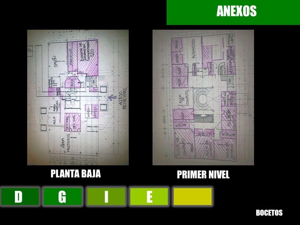 DGIE ANEXOS PLANTA BAJA PRIMER NIVEL BOCETOS