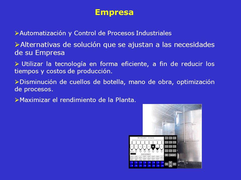 Servicios Diseño e Implementación de Proyectos Asesoría en Instrumentación y Elementos de Control Control de procesos como: Nivel de llenado, Conductividad Dosificación de Ingredientes, Consistencia Velocidad de Motores Presión, Viscosidad Temperatura, Densidad Caudal, Humedad, etc.