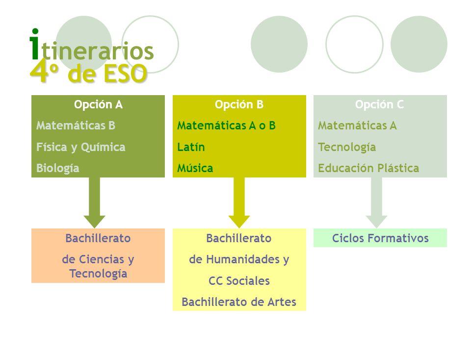 i tinerarios 4 º de ESO Opción A Matemáticas B Física y Química Biología Opción B Matemáticas A o B Latín Música Opción C Matemáticas A Tecnología Edu
