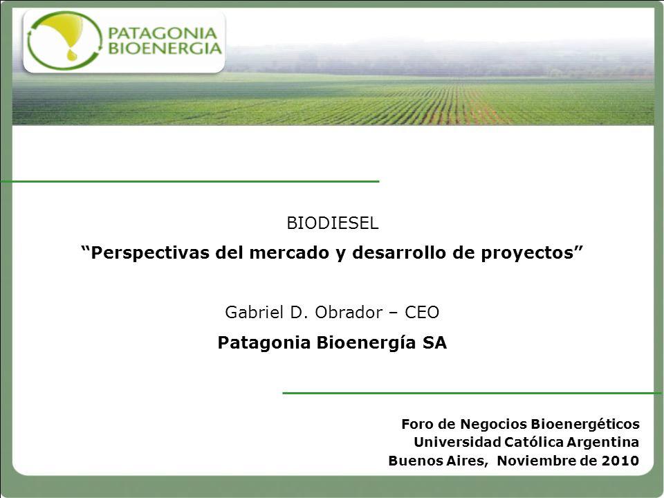 BIODIESEL Perspectivas del mercado y desarrollo de proyectos Gabriel D. Obrador – CEO Patagonia Bioenergía SA Foro de Negocios Bioenergéticos Universi