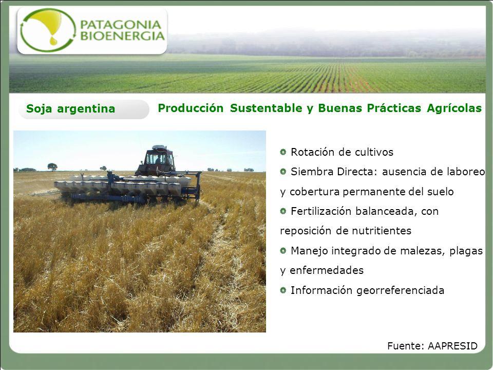 Producción Sustentable y Buenas Prácticas Agrícolas Soja argentina Rotación de cultivos Siembra Directa: ausencia de laboreo y cobertura permanente de