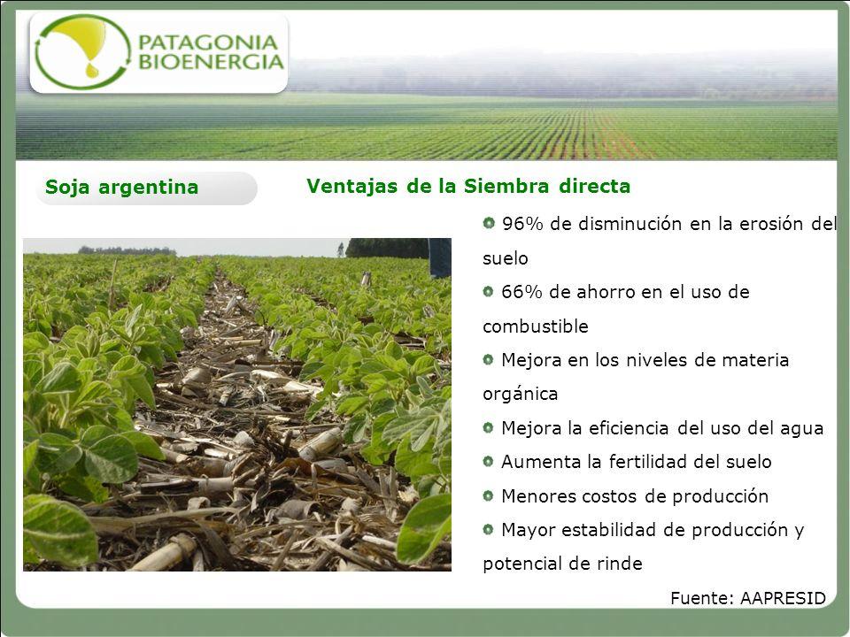 Ventajas de la Siembra directa Soja argentina 96% de disminución en la erosión del suelo 66% de ahorro en el uso de combustible Mejora en los niveles