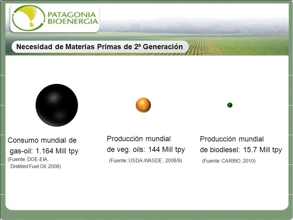 Consumo mundial de gas-oil: 1.164 Mill tpy (Fuente: DOE-EIA, Distilled Fuel Oil, 2006) Producción mundial de veg. oils: 144 Mill tpy (Fuente: USDA-WAS