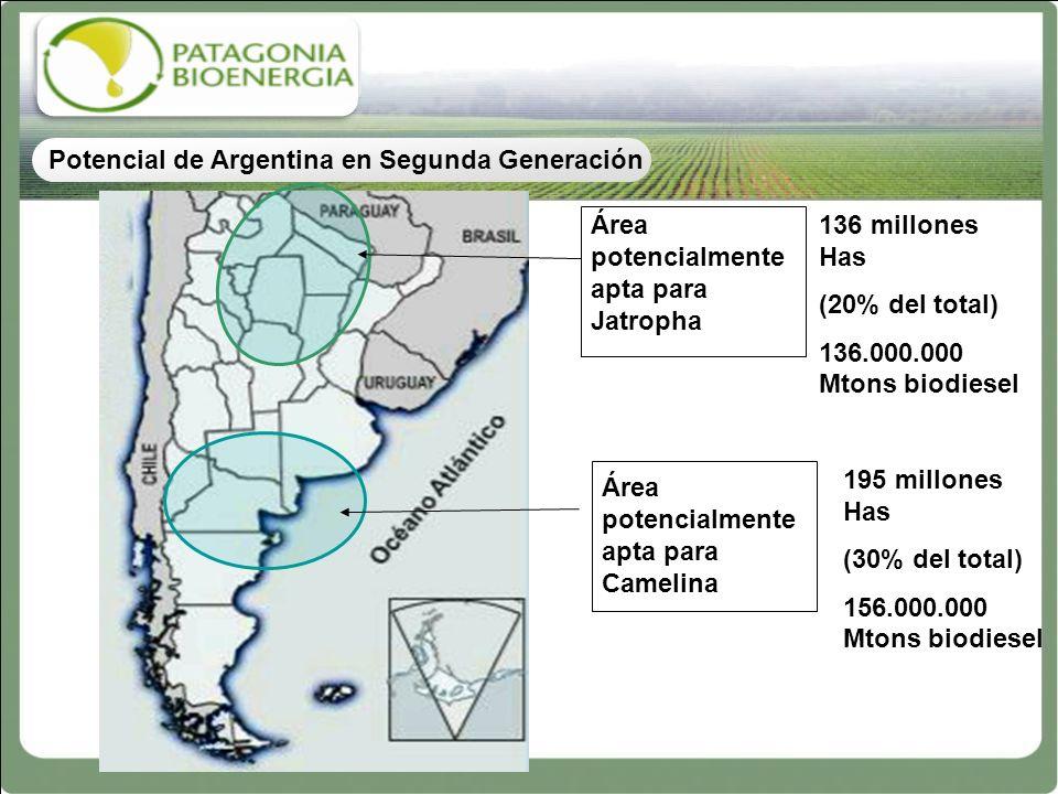 Área potencialmente apta para Jatropha Área potencialmente apta para Camelina 136 millones Has (20% del total) 136.000.000 Mtons biodiesel 195 millone
