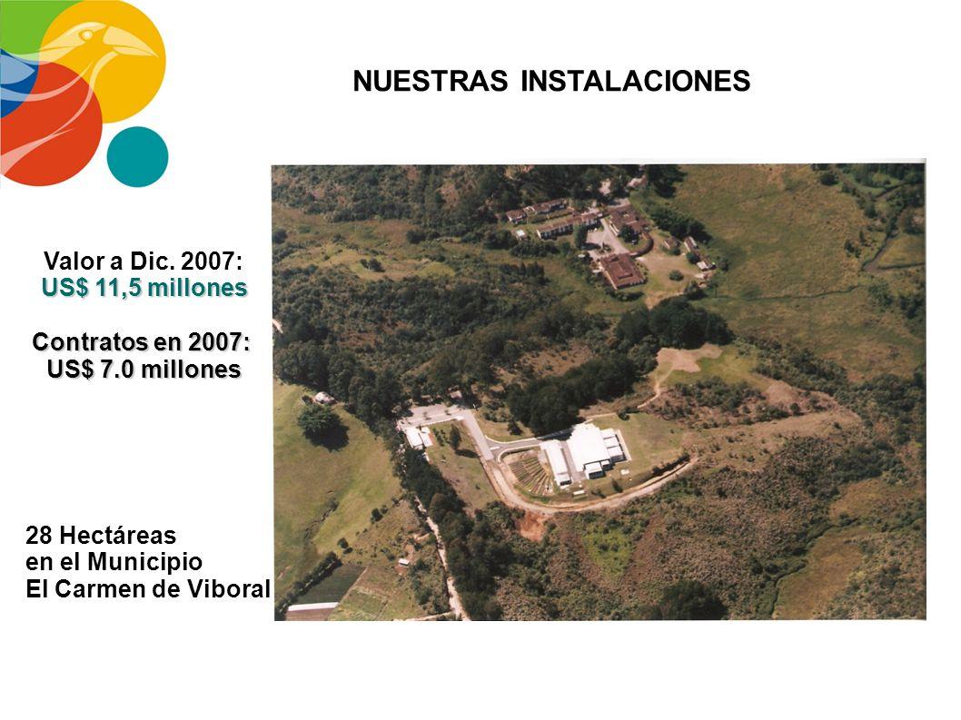 Empresas existentes: Sector Empresarial de Antioquia Nuevas Empresas en Antioquia Universidades Públicas Privadas Centros de Investigación CIB CECIF L